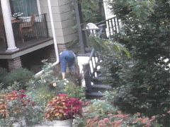PAWG Neighbor Mowing Lawn Returns