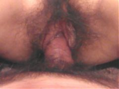 Pussy no 1